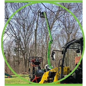 tree removal service Fishers Island NY